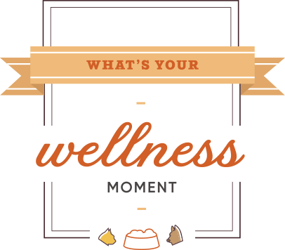 whatsyourwellness